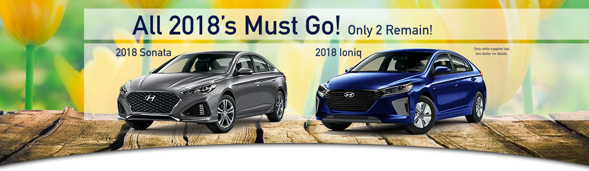 2018 Hyunda Sonata and IONIQ
