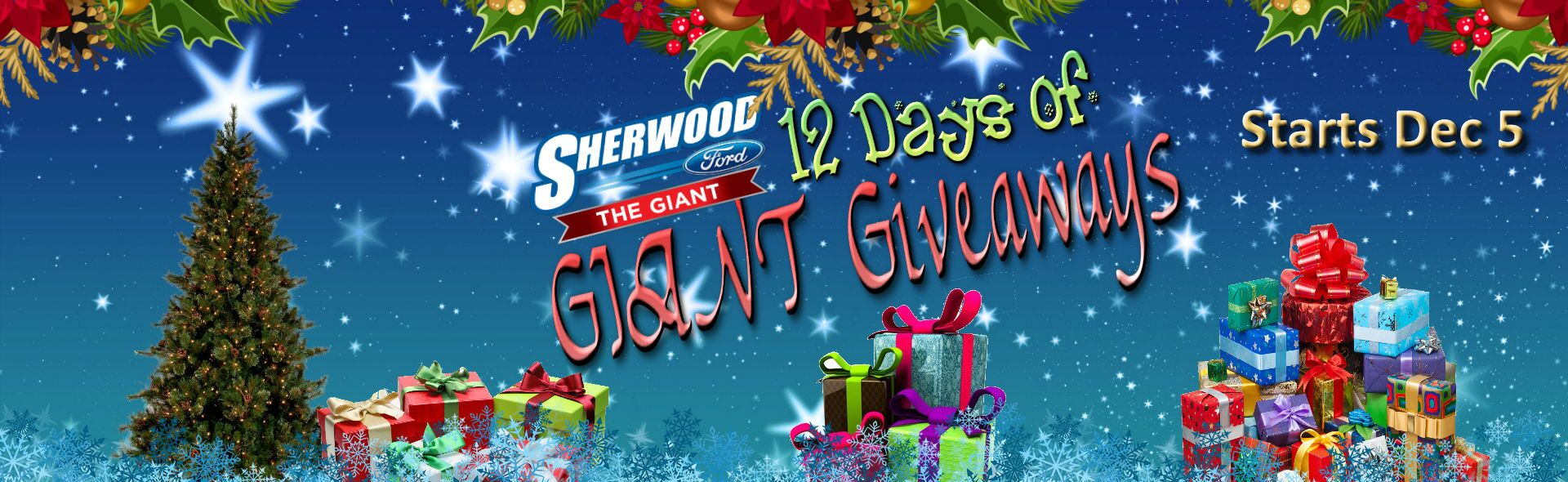 Sherwood Ford 12 Days of Giveaways