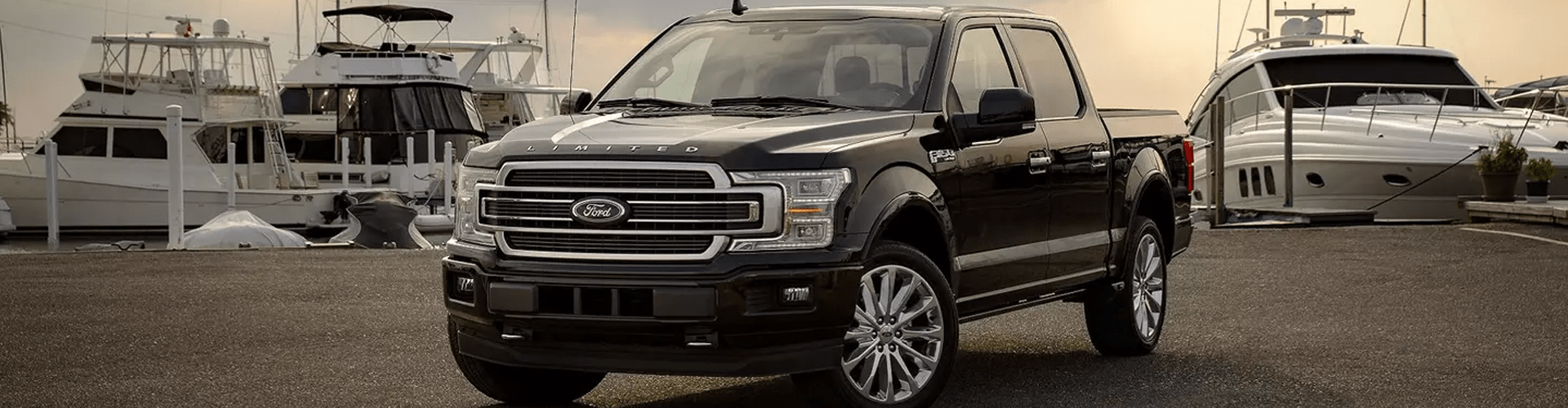 All New 2019 F150