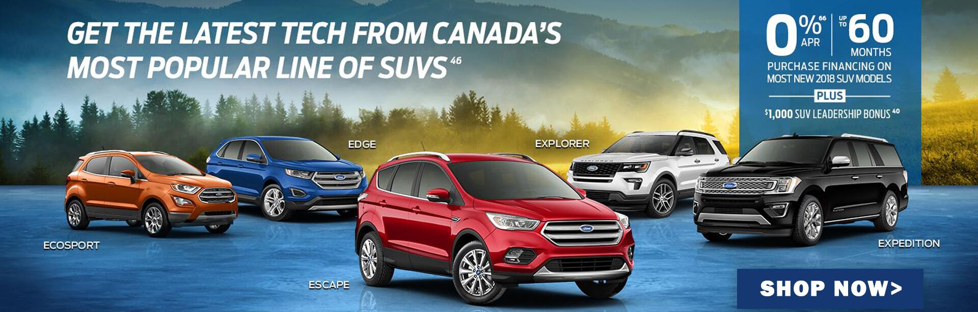 Ford SUV for sale in Calgary