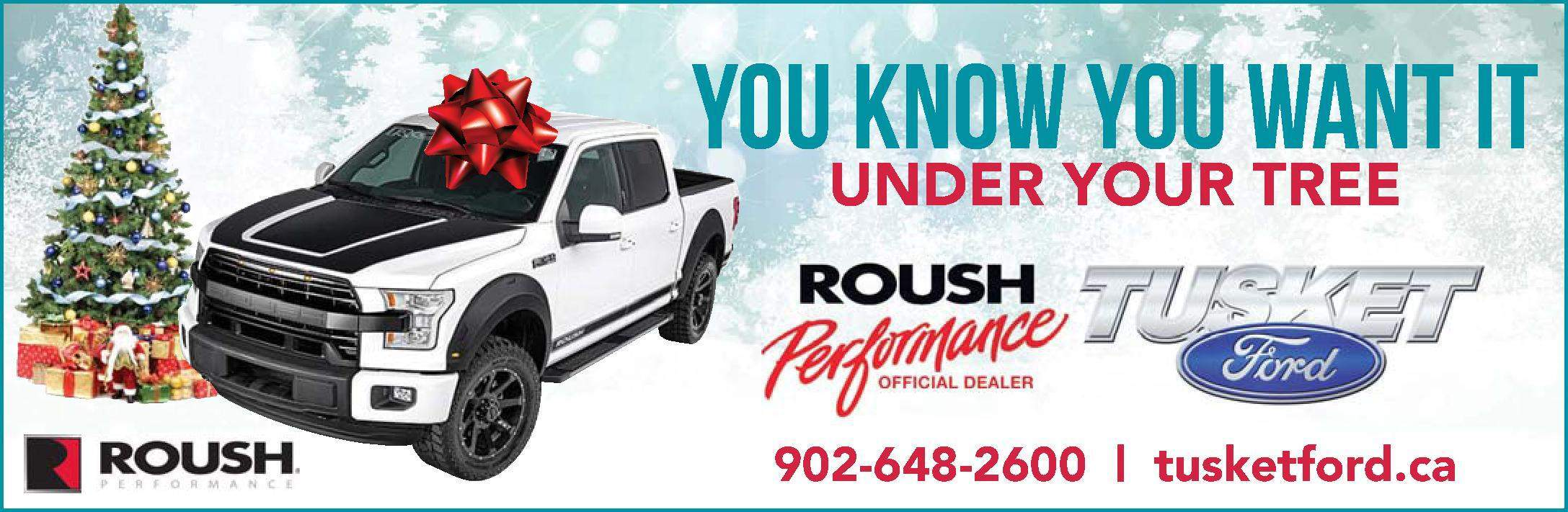 ROUSH Under the Tree