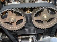 SERVICE TIMING BELT SPECIAL