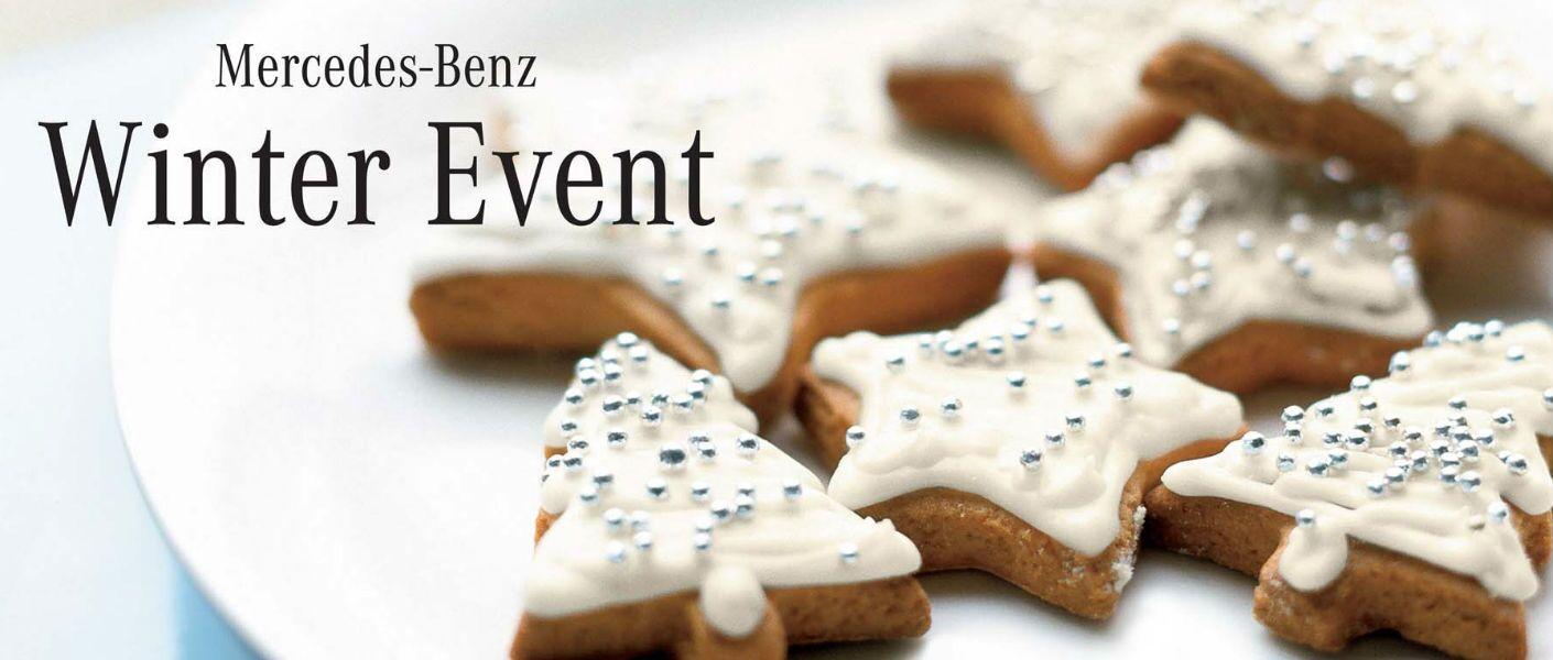 Mercedes benz winter event kansas city mo for Mercedes benz winter event commercial