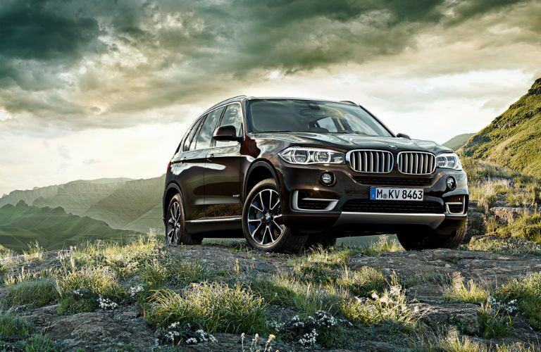 2015 BMW X5 Front Grille BMW Topeks