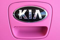 Custom Pink Matte Wrap on new Kia Soul