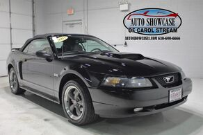 Ford Mustang GT Convertible 100th Anniversary 2003