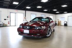 2004_Ford_Mustang_GT Premium Convertible_ Lombard IL