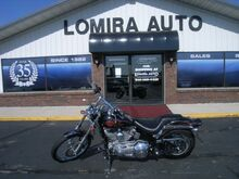 2005_HARLEY_SOFT TAIL CUSTOM PAINT__ Lomira WI