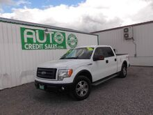 2009_Ford_F-150_FX4 SuperCrew 5.5-ft. Bed 4WD_ Spokane Valley WA