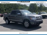 2010 Ford F-150 Platinum Watertown NY