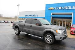 2011_Ford_F-150_XLT_ Rochester IN