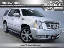 2013_Cadillac_Escalade_Nav Roof Rear Bucket_ Hickory Hills IL