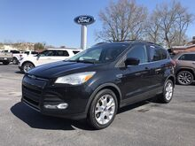 2013_Ford_Escape_SE_ Johnston SC