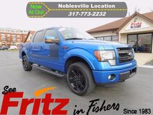 2013_Ford_F-150_FX4_ Fishers IN