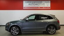 2014_Audi_SQ5_Premium Plus_ Greenwood Village CO