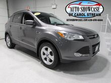 2014_Ford_Escape_SE_ Carol Stream IL