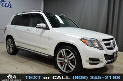2014_Mercedes-Benz_GLK-Class_GLK 350_ Hillside NJ