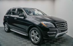 2014_Mercedes-Benz_M-Class_ML 350_ Hickory NC