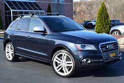 2015_Audi_SQ5_Premium Plus Quattro_ Easton PA