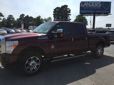 Ford Super Duty F-250 SRW Platinum 2015