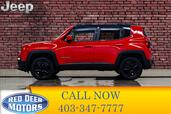 2015 Jeep Renegade 4x4 North BCam