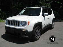 Jeep Renegrade limited 2015