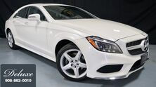 Mercedes-Benz CLS 400 4MATIC, Premium 2 Pkg, Lane Tracking Pkg, Navigation System, Rear-View Camera, AMG Wheels, 2015