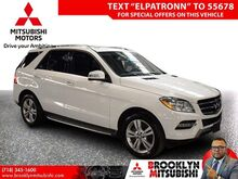 2015_Mercedes-Benz_M-Class_ML 350_ Brooklyn NY