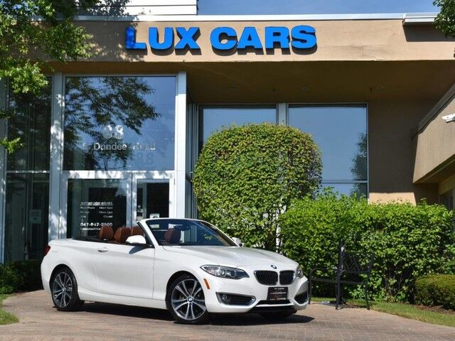 2016_BMW_228i_xDrive Convertible Luxury Nav AWD MSRP $51,720_ Buffalo Grove IL