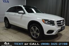 2016_Mercedes-Benz_GLC_GLC 300 4matic_ Hillside NJ