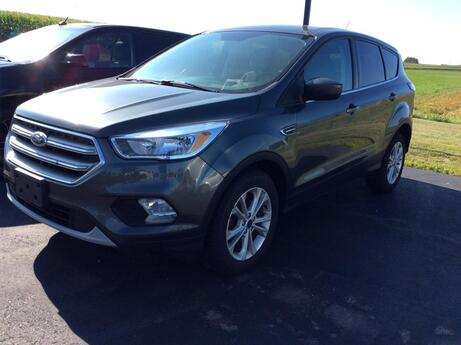 2017 FORD ESCAPE SE Viroqua WI