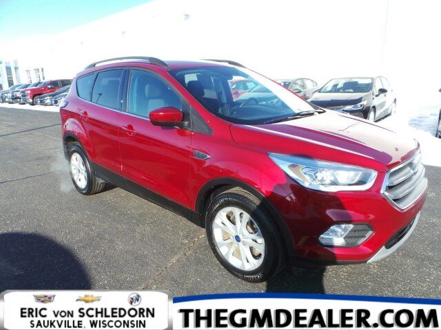2017 Ford Escape SE FWD 1.5L EcoBoost ColdWeatherPkg w/HtdCloth PowerLiftgate SYNC RearCamera Milwaukee WI