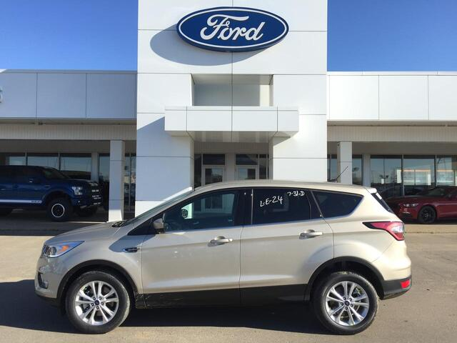 2017 Ford Escape SE FWD Edmonton AB