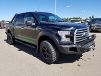 Ford F-150 XLT (Level Kit, Rims & Tires, Winch Bumper) 2017