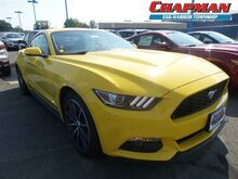 2017_Ford_Mustang_2DR FASTBACK ECO_  PA