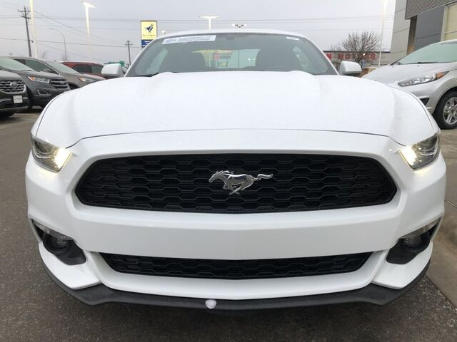 2017 Ford Mustang EcoBoost Rochester MN