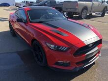 2017_Ford_Mustang_GT (Decal Pack, Gloss Black Niche Wheels)_ Swift Current SK