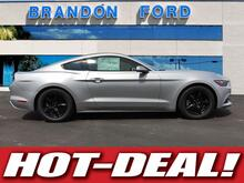2017_Ford_Mustang_V6_ Tampa FL