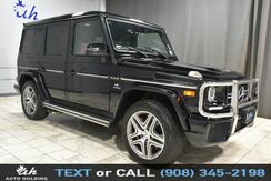 2017_Mercedes-Benz_G-Class_AMG G 63_ Hillside NJ
