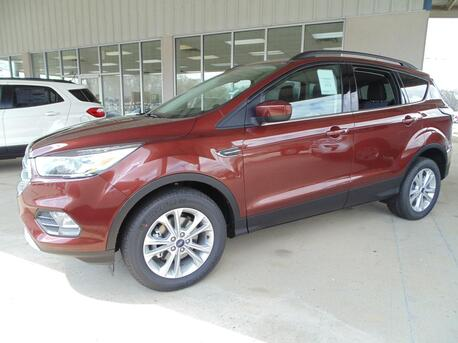 2018_Ford_Escape_SE_ Paris TN