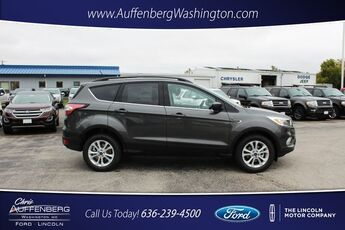 2018_Ford_Escape_SE_ Cape Girardeau