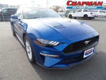 2018_Ford_Mustang_2DR FASTBACK ECO_  PA