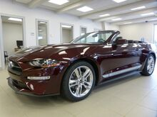 2018_Ford_Mustang_EcoBoost Premium_ Tusket NS