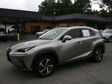 2018_Lexus_NX 300_Base_ Roanoke VA