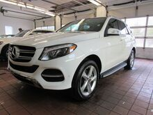 2018_Mercedes-Benz_GLE_350 4MATIC® SUV_ Greenland NH