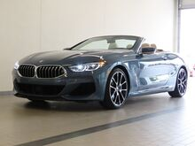 2019_BMW_8 Series_M850i xDrive_ Topeka KS