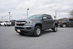 2019_Chevrolet_Colorado_2WD Work Truck_  TX