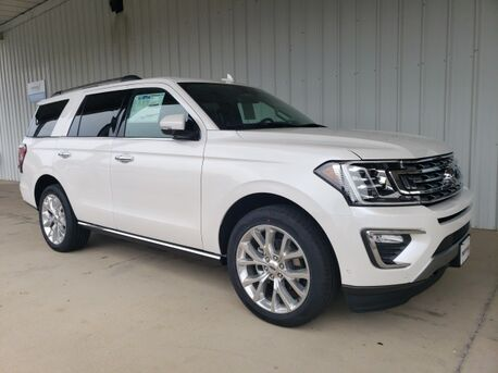 2019_Ford_Expedition_Limited_ Paris TN