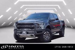 Ford F-150 4x4 Raptor Running Boards Navi Panorama Roof 2019