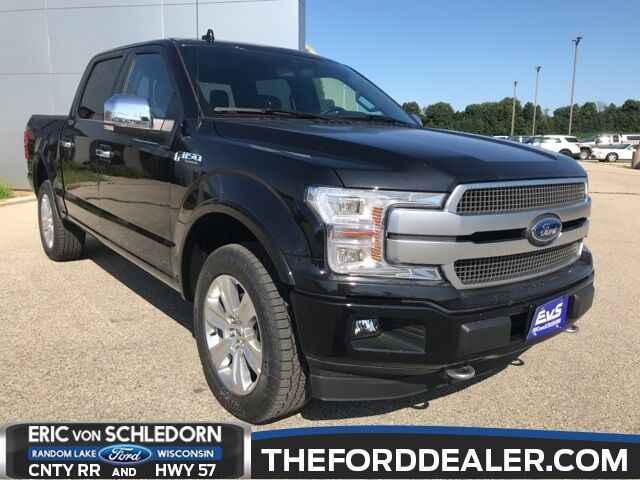 2019 Ford F-150 Platinum Milwaukee WI
